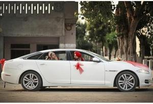 Jaguar for wedding in punjab