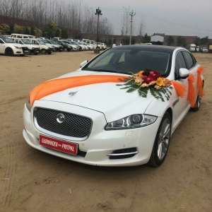 Jaguar in Punjab