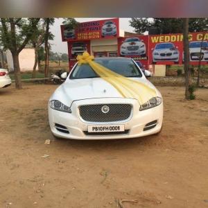 Jaguar in Punjab for Wedding