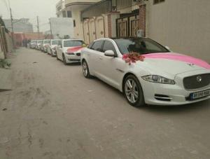 Wedding cars punjab